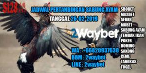 Jadwal Pertandingan Sabung Ayam 26-02-2019