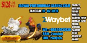 Jadwal pertandingan sabung ayam 15-02-2019