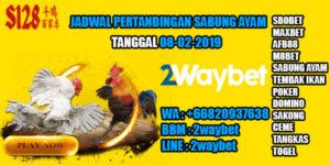 Jadwal pertandingan sabung ayam s128 08-02-2019