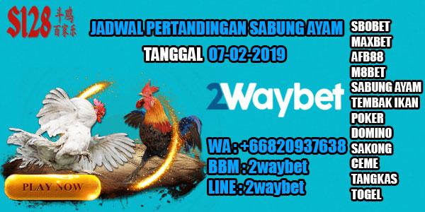 Jadwal-sabung-ayam-online-07-02-2019
