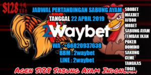 Jadwal Pertandingan Sabung Ayam 22-04-2019